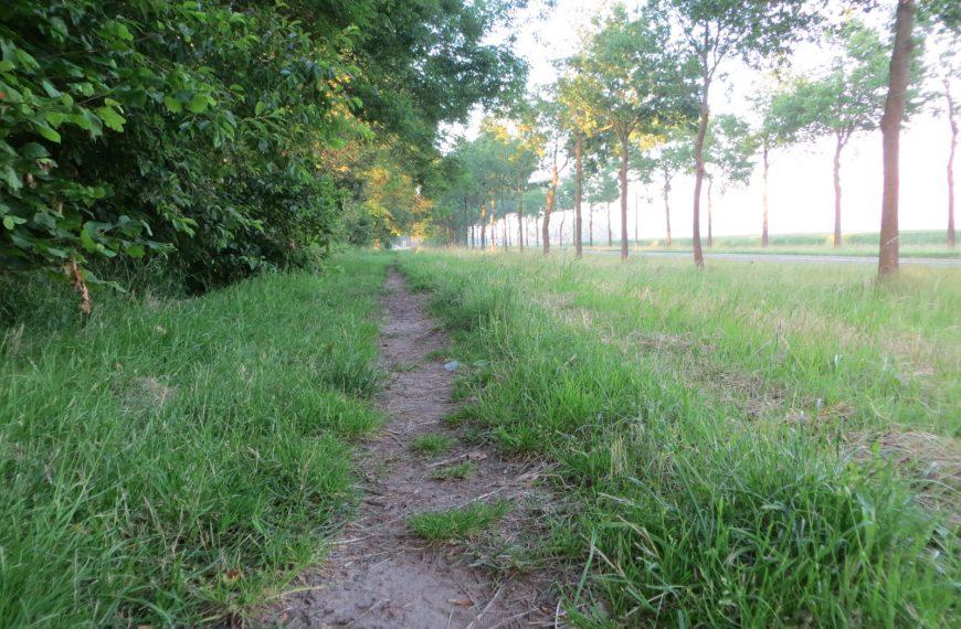 Historische wandeling Hellum in de maak