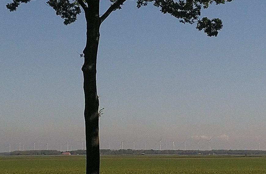 Windmolens of windturbines? + oproep invullen enquête